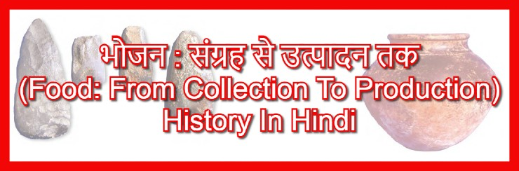 (भोजन : संग्रह से उत्पादन तक -Food: From Collection To Production History In Hindi Language)
