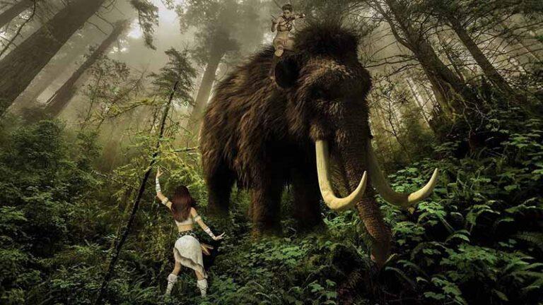 निएंडरथल का इतिहास (History of Neanderthals)